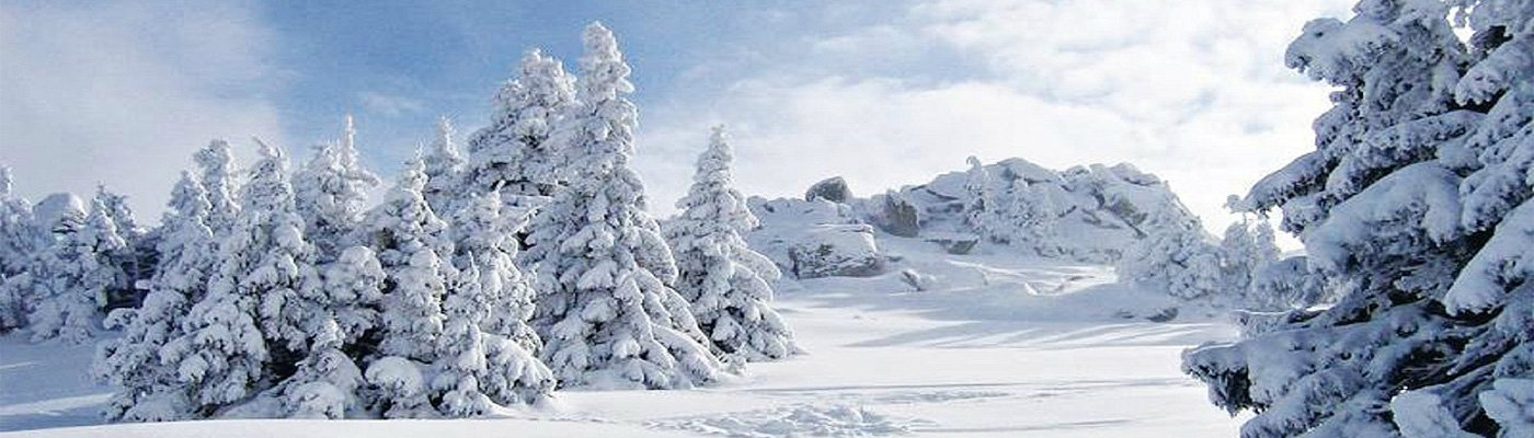 Kopaonik, Natural beauty unrivaled